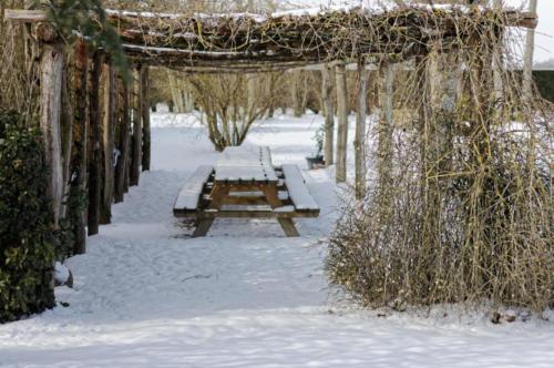 Tonnelle en hiver